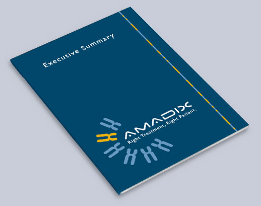 amadix-executive.sumary
